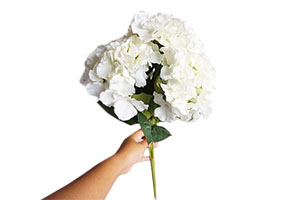Eba05 Artificial Flowers Hydrangea White Bunch Just Rent It